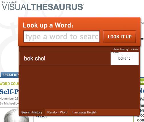 Visual Thesaurus Search